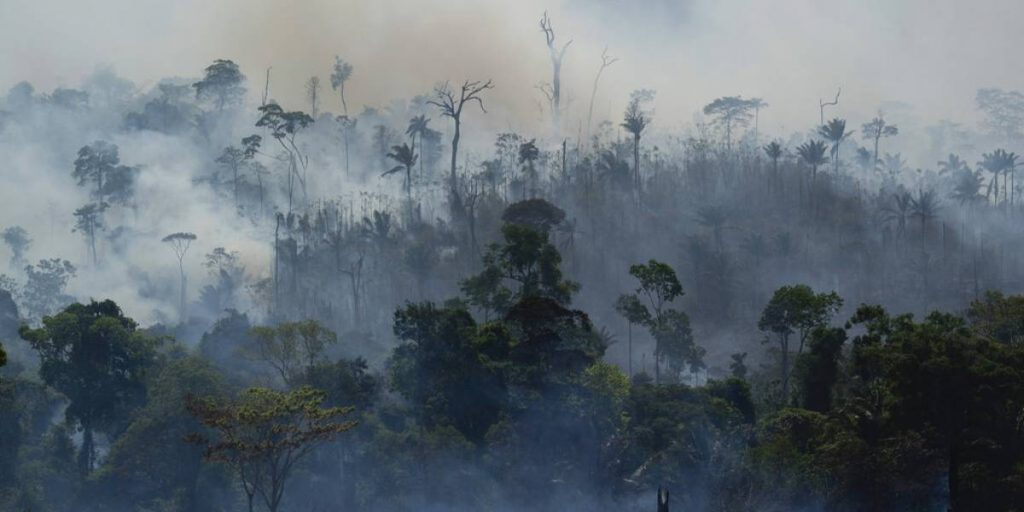 Incendios Amazonia Brasilena