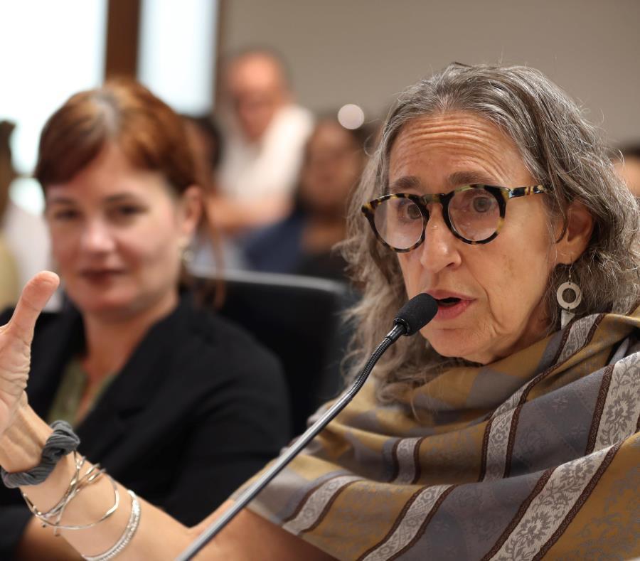 Ana Maria Garcia Blanco Directora Ejecutiva Del Instituto Nueva Escuela