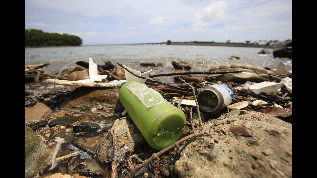Desechos En Una Playa