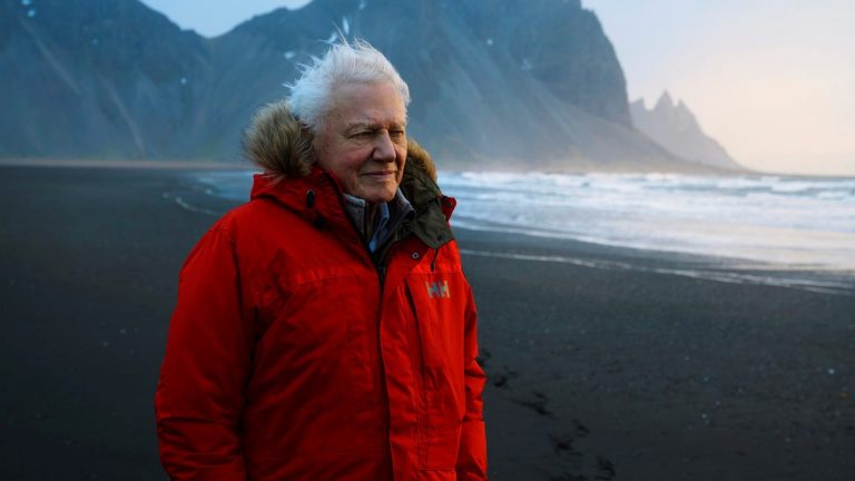 Sir David Attenborough Naturalista BBC Siete Mundos Un Planeta