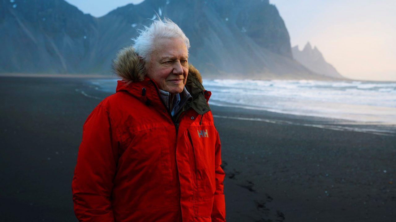 Sir David Attenborough Naturalista BBC Siete Mundos Un Planeta