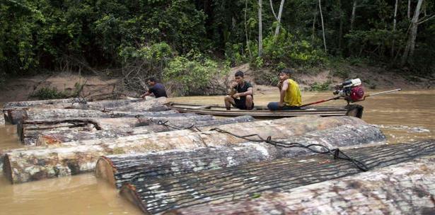 Ambientalistas Indigenas Peruanos