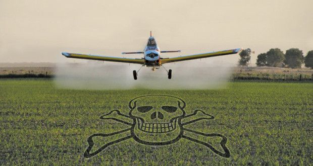 Genocidio Con Agrotoxicos