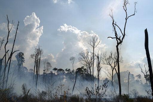 Bosque Quemado Region Amazonica Alvorada Novo Progresso