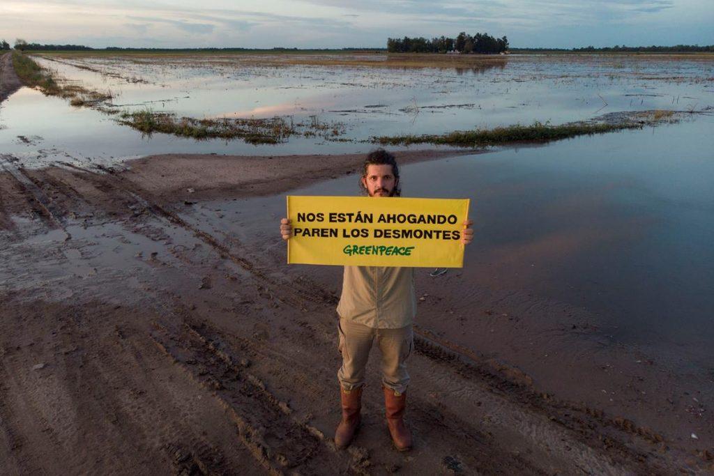 Deforestacion En El Norte Argentino