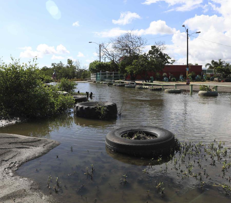 Comunidad De El Faro En Guayanilla