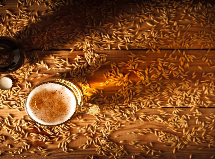 Granos De Cerveza