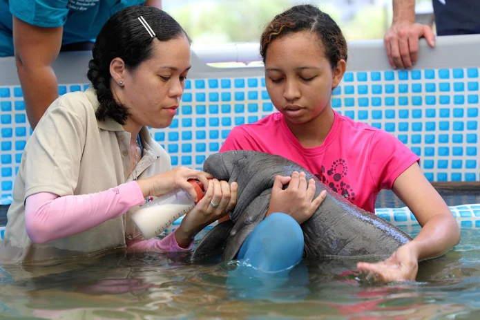 Manati Bebe Rescatada En Panama